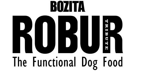2009 bozita_robur_logo_black