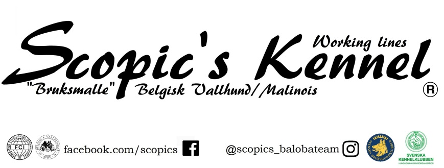 Scopic's Bilder 0